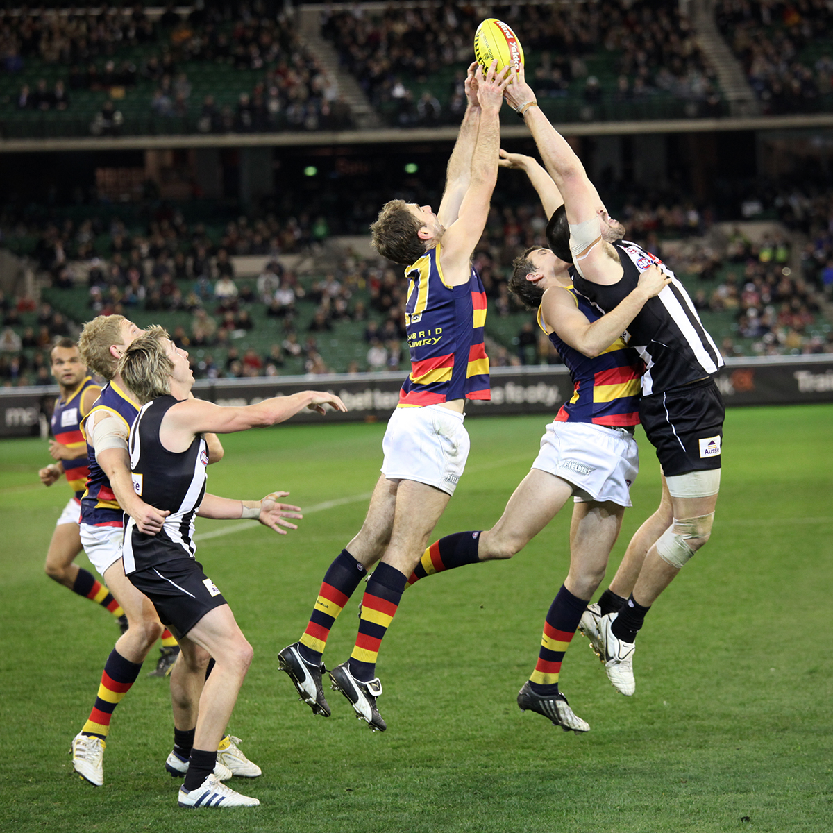 MELBOURNE - AUGUST 21:  Adelaide's Scott Stevens (centre) and Co